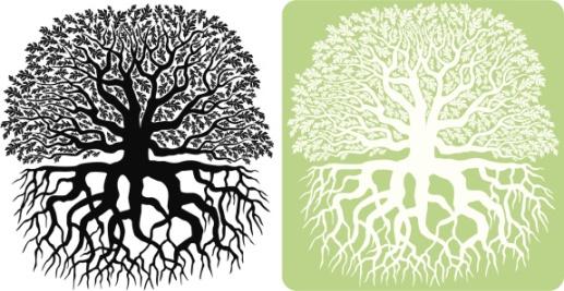 treeandroots